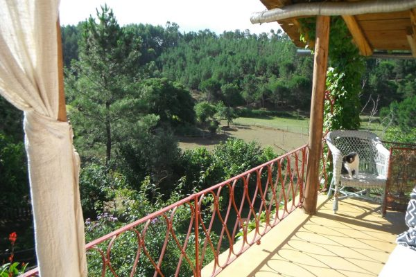 Holiday-house-alegria-portugal-by-horse4
