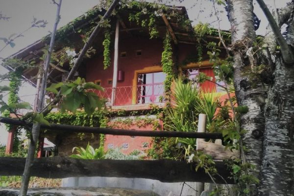Portugal-by-Horse-Riding-Holidays-Accommodation-Alegria