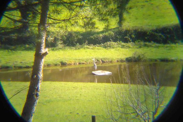 Holiday farm Portugal nature