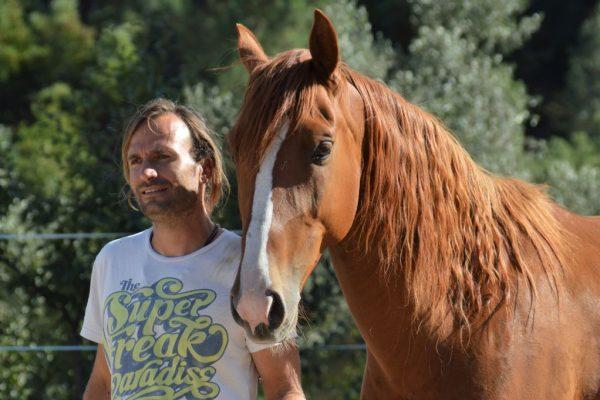 Férias no campo Turismo rural com cavalos