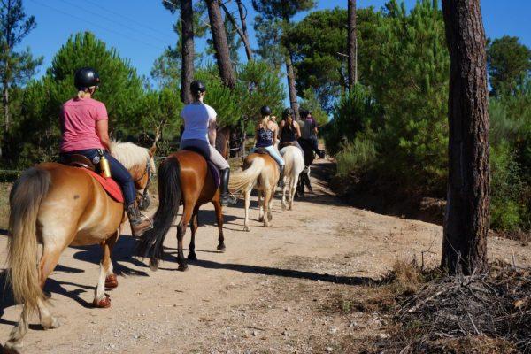 horse riding-paardrijden-passeios a cavalo-randonnée a cheval- Portugal