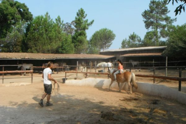 Holiday-farm-Portugal-by-horse-Riding-holidays-11