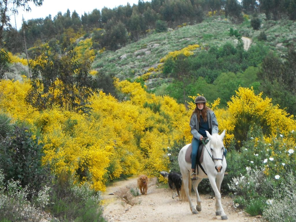 vakantieboerderij met paardrijden door de natuur Portugal