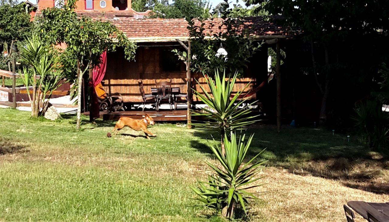 Woonwagen vakantiehuisje in Portugal