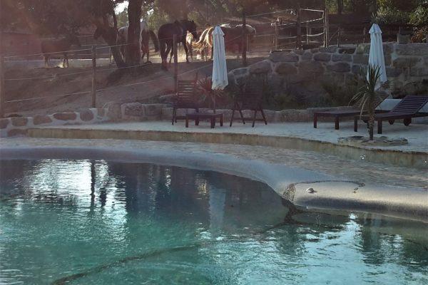 vakantieboerderij met zwembad Portugal