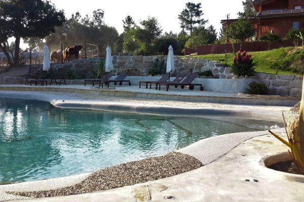 Salt water Swimming pool Quinta da Alegria Portugal Biodesign