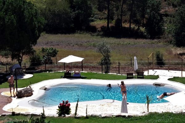 Holiday Accomodation with swimming pool