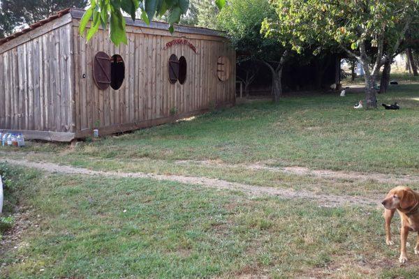 Férias no campo estábulos dos cavalos